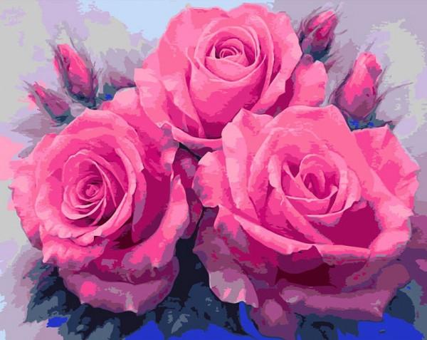 Malen nach Zahlen Rosen 40x50 E592